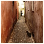 year 2013-14 playtime faces by suklaanainen narrow street in brasov