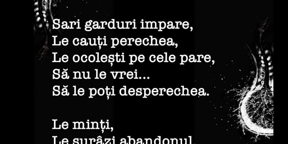 Poezie pe Strada Sforii :: @sucitinzbor